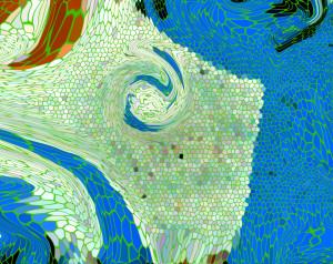 Del Rey-fondo del mar 1